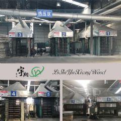 沭阳县宇翔木业全杨木顺向板 免熏蒸出口专用