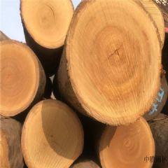 巴蒂木材加工/巴蒂非洲黄花梨
