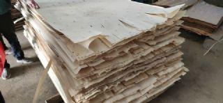 木皮防霉剂PT 喷涂型不伤皮面不变形