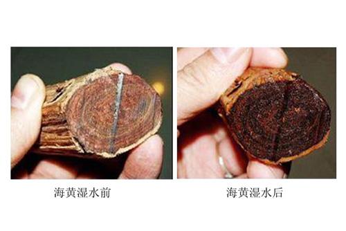 木材知识—海南黄花梨木性解析