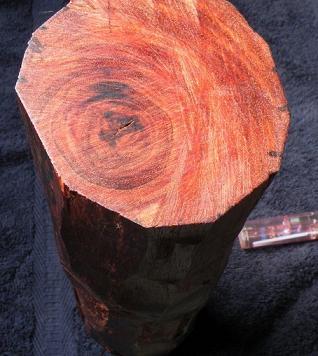 紫檀是红木中的精品,密度较大,棕眼较小,多产于热带,亚热带原始森林.