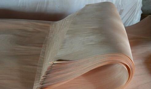 加蓬木皮生产商面对奥古曼原木短缺难题