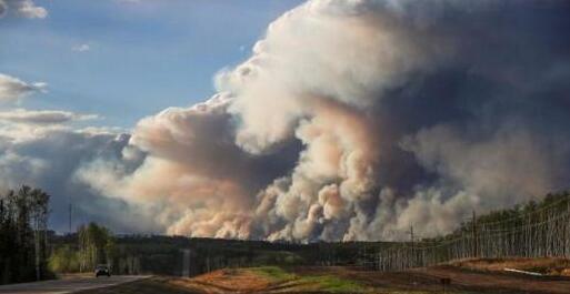 加拿大森林大火迫使三家主要木材商停工