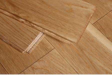 柞木因何被称为中国橡木?
