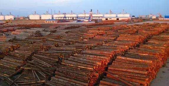 莆田木材商告诉你,如何进行木材产业的转型
