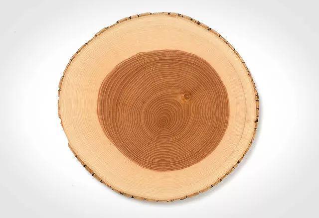 带你认识白栓木,极简原木风的最美诠释