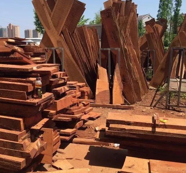 横空出世:非洲白酸枝是什么木头?