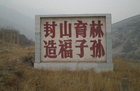 国家林草局:我国东京干福利视频大哥电影供给缺口不大