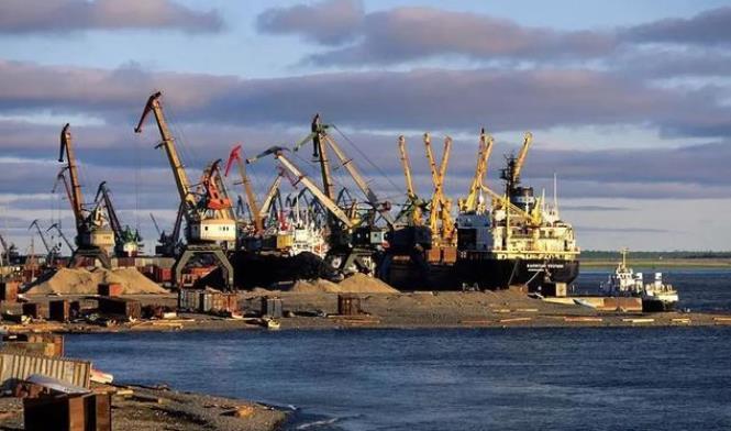 疫情之下的俄罗斯木材进口