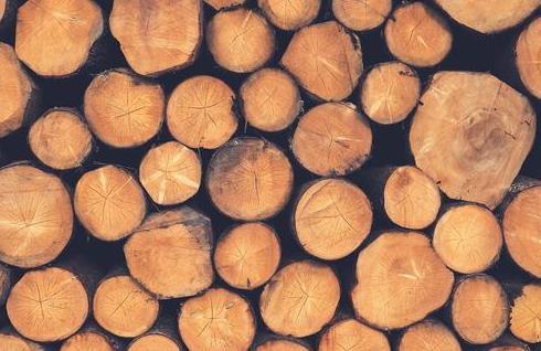 中国木材面临断供究竟为何